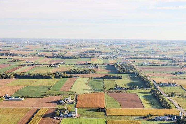 content farms