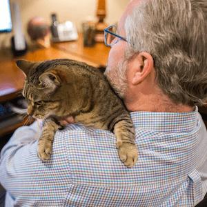 abby cat tax nerd