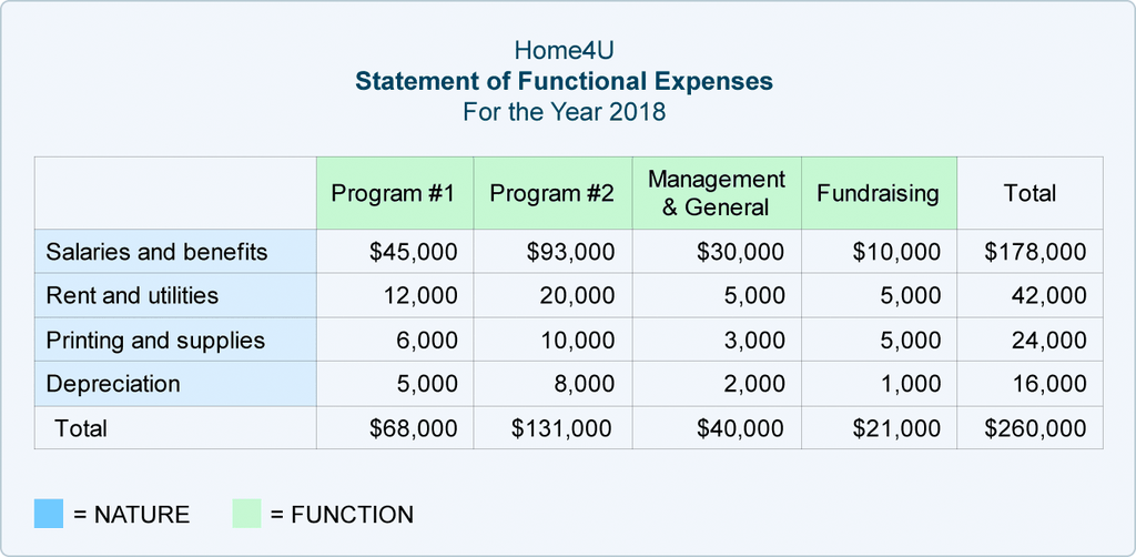 Statement of Functional Expense